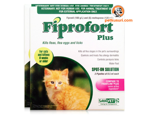 Fiprofort_Plus_for_Cats_&_Kittens_8_Weeks_or_Older_x3_x2set-pk__30213_zoom.jpg