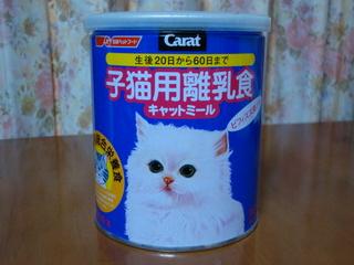 子猫用離乳食
